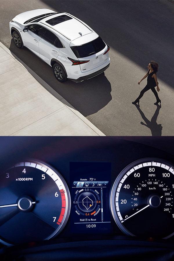 2019 Lexus NX Specs & Safety